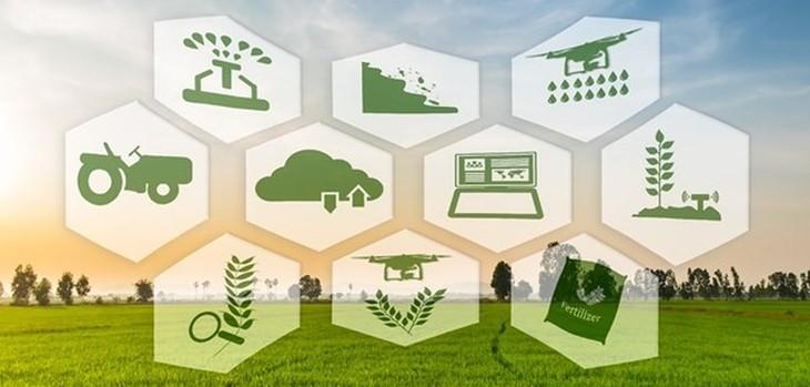 ไทยพัฒนาการเกษตร 4.0 - ảnh 1