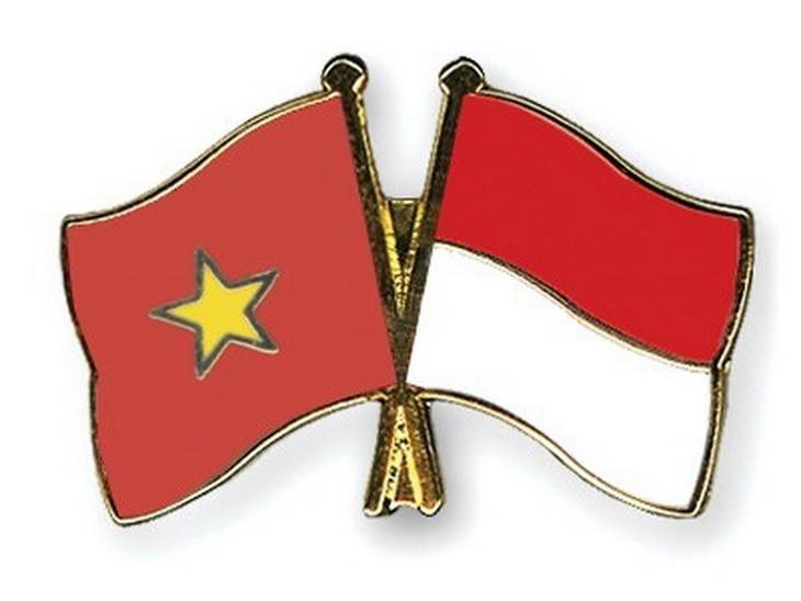 หุ้นส่วนยุทธศาสตร์เวียดนาม – อินโดนีเซีย จุดเริ่มต้นที่ดีงามเพื่อมุ่งสู่อนาคต - ảnh 1