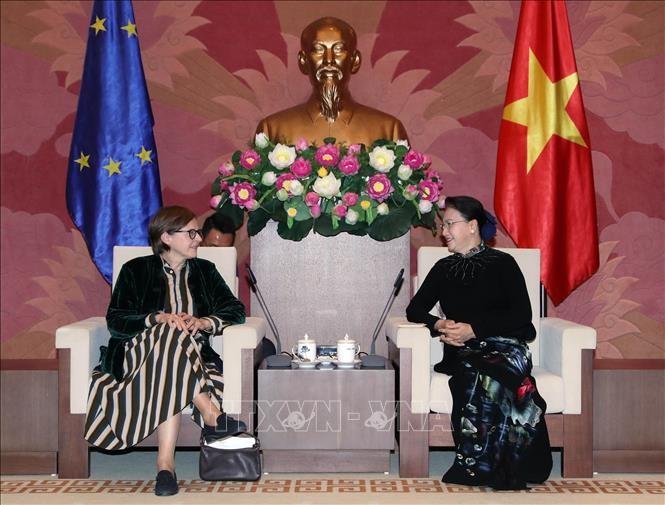เวียดนามถืออียูเป็นหุ้นส่วนชั้นนำที่สำคัญ - ảnh 1