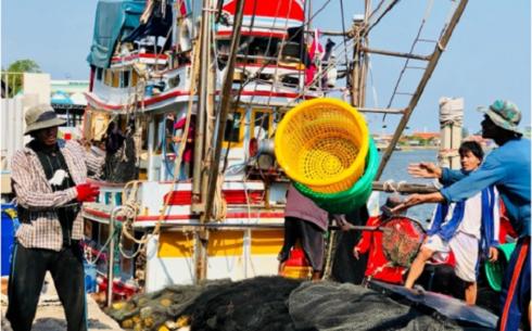 อียูยกเลิกใบเหลืองต่อประเทศไทยเรื่องทำประมงอย่างผิดกฎหมาย - ảnh 1