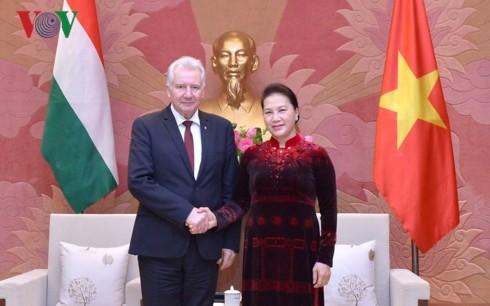 ประธานสภาแห่งชาติ เหงียนถิกิมเงิน ให้การต้อนรับรองประธานรัฐสภาฮังการี - ảnh 1