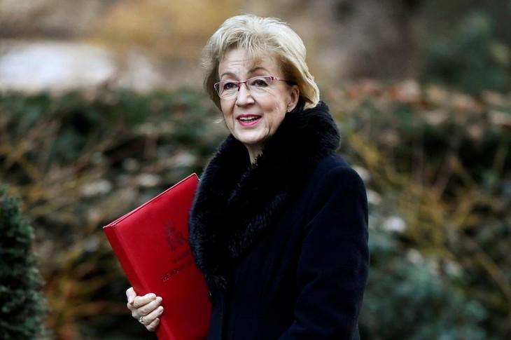 British Lower House leader resigns - ảnh 1