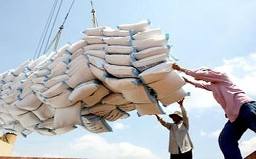 Việt Nam trúng thầu 175 nghìn tấn gạo xuất khẩu sang Philippines - ảnh 1