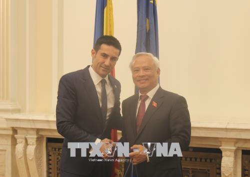 Romania đánh giá cao vai trò của Việt Nam ở Đông Nam Á - ảnh 1