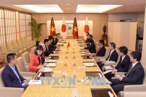 Phó Thủ tướng, Bộ trưởng Ngoại giao Việt Nam hội đàm với Bộ trưởng Ngoại giao Nhật Bản - ảnh 1