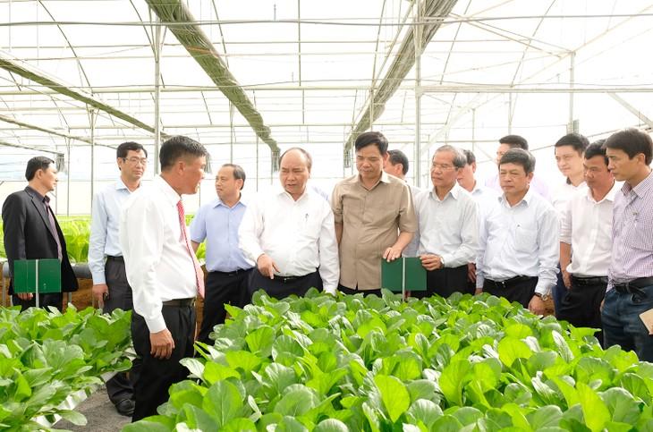 Thủ tướng thăm mô hình nông nghiệp sạch tại Lâm Đồng - ảnh 3