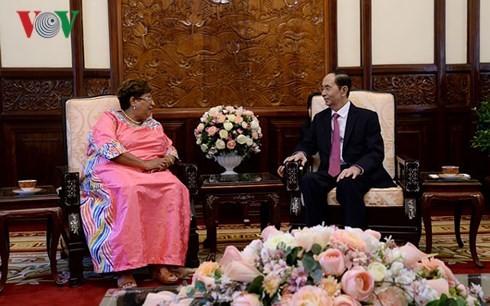 Chủ tịch nước Trần Đại Quang tiếp các Đại sứ trình Quốc thư - ảnh 4