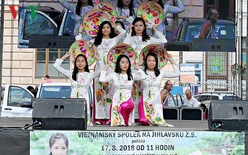 Sôi nổi Ngày Văn hóa Việt Nam tại Jihlava, CH Séc - ảnh 1