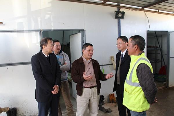Đại sứ quán Việt Nam tại An-giê-ri thăm, chúc tết công nhân Việt Nam  - ảnh 5