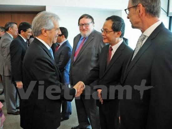 Việt Nam và Uruguay tăng cường quan hệ hợp tác  - ảnh 1