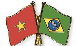 Góp phần giữ gìn, phát triển tình hữu nghị đoàn kết, hợp tác Việt Nam-Brazil - ảnh 1