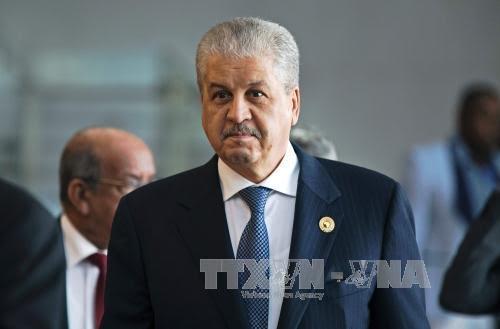 EU boosting Algeria-EU relations - ảnh 1