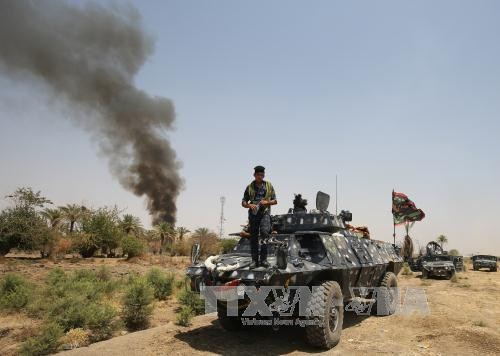 Hundreds of IS militants killed in airstrikes in western Iraq - ảnh 1