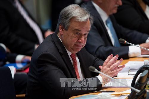 UN chief appoints force commander of UNISFA - ảnh 1