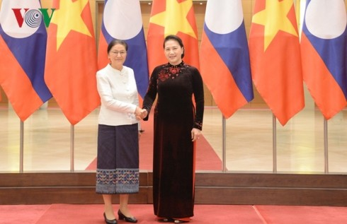 Vietnam, Laos share experience in People's Council operation  - ảnh 1