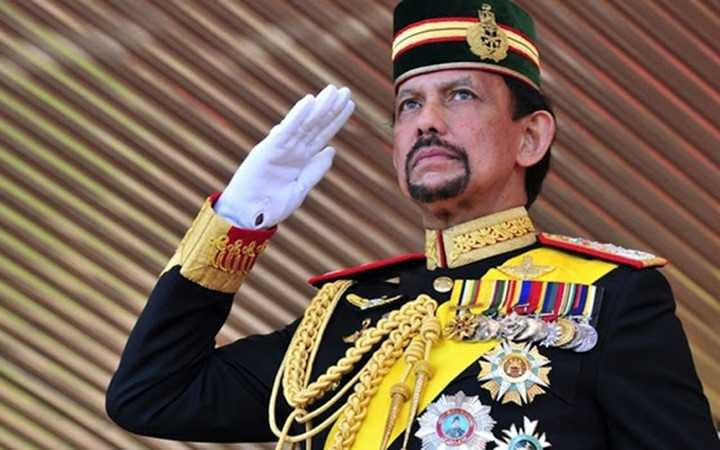 Sultan of Brunei to pay State visit to Vietnam - ảnh 1