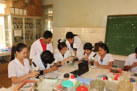 Sắp xếp lại mạng lưới giáo dục đại học và đào tạo giáo viên - ảnh 1