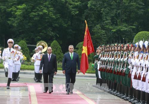 Hội đàm cấp cao Việt Nam - Hungary - ảnh 1