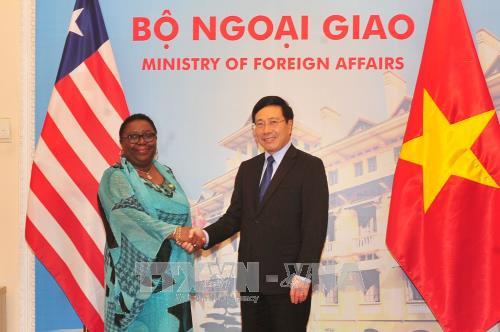 Bộ trưởng Ngoại giao Liberia và Việt Nam hội đàm - ảnh 1