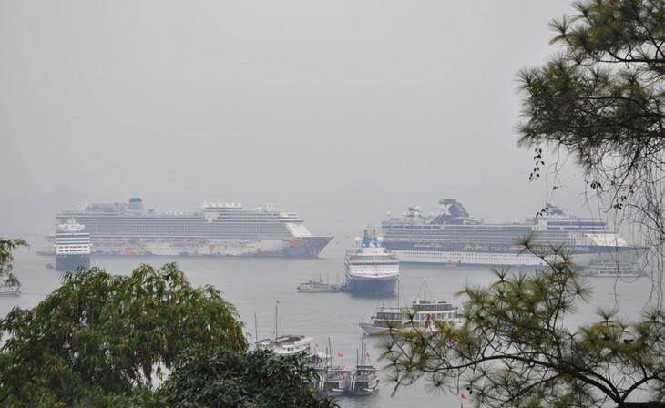 4 tàu biển quốc tế đưa hơn 6.200 du khách đến Hạ Long - ảnh 2