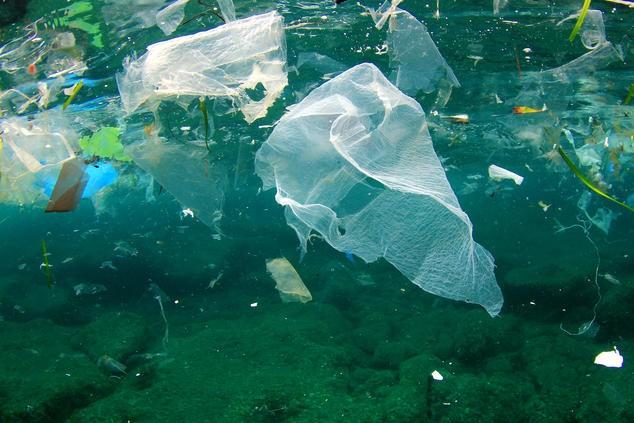 Chống ô nhiễm rác thải nhựa: Nếu bạn không tái sử dụng, hãy ngừng sử dụng - ảnh 4