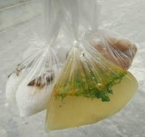 Chống ô nhiễm rác thải nhựa: Nếu bạn không tái sử dụng, hãy ngừng sử dụng - ảnh 2