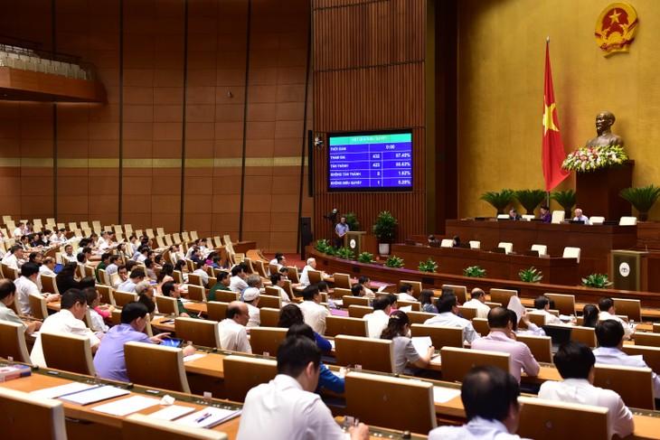 Quốc hội thông qua Nghị quyết về Chương trình giám sát năm 2019 - ảnh 1