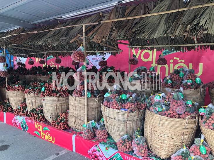 Khai mạc Tuần lễ vải thiều Lục Ngạn-Bắc Giang tại Hà Nội  - ảnh 1