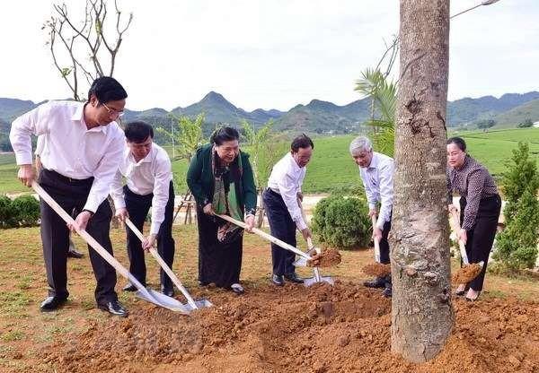 Phó Chủ tịch Thường trực Quốc hội Tòng Thị Phóng tiếp xúc cử tri tỉnh Sơn La - ảnh 1