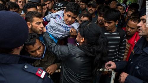 Vấn đề người tị nạn tiếp tục chia rẽ Châu Âu - ảnh 1