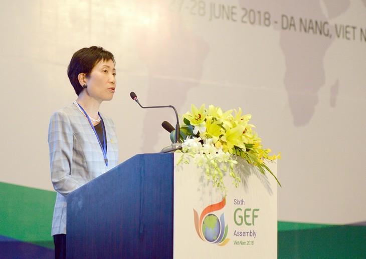 Việt Nam đóng góp vào thành công chung của Kỳ họp lần thứ 6 của Đại hội đồng Quỹ môi trường - ảnh 1