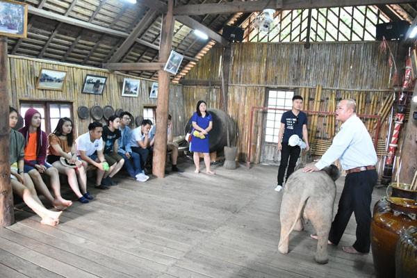 Trại hè Việt Nam 2018: Đến với thủ phủ cà phê Việt Nam - ảnh 11