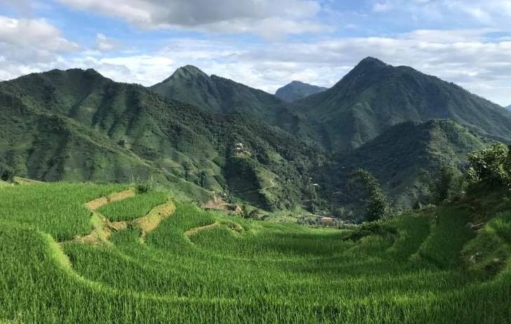 Daniel Nguyễn Hoài Tiến: Tôi trở về vì bị cuốn hút bởi chiều sâu văn hóa Việt - ảnh 2