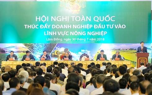 Hội nghị toàn quốc thúc đẩy doanh nghiệp đầu tư vào lĩnh vực nông nghiệp  - ảnh 2