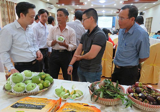 Giải pháp phát triển thương hiệu nông sản thành phố Cần Thơ  - ảnh 1