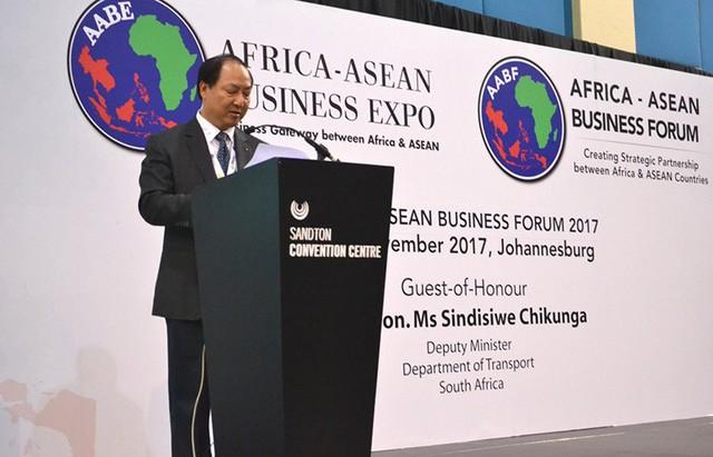 Thúc đẩy hợp tác nhiều mặt giữa Việt Nam - Nam Phi - ảnh 1