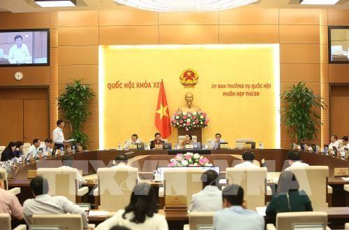 Ủy ban Thường vụ Quốc hội cho ý kiến về dự án luật Trồng trọt - ảnh 1