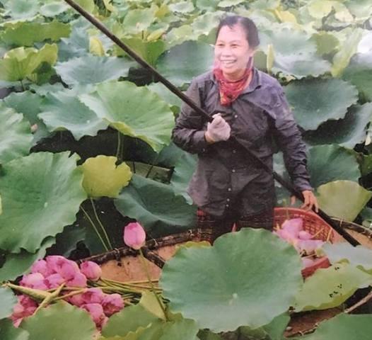 Trà ướp hương Sen Tây Hồ: Phong vị thanh tao đất Hà Thành - ảnh 3