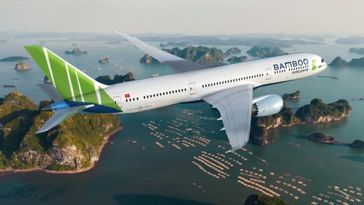 Tập đoàn FLC chính thức ra mắt thương hiệu mới Bamboo Airway - ảnh 3