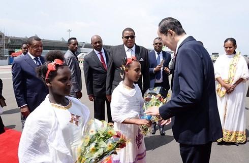 Chủ tịch nước Trần Đại Quang bắt đầu chuyến thăm cấp Nhà nước Ethiopia - ảnh 4