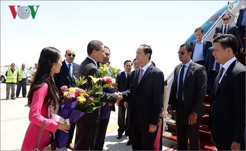Chủ tịch nước Trần Đại Quang thăm cấp Nhà nước đến Ai Cập - ảnh 2