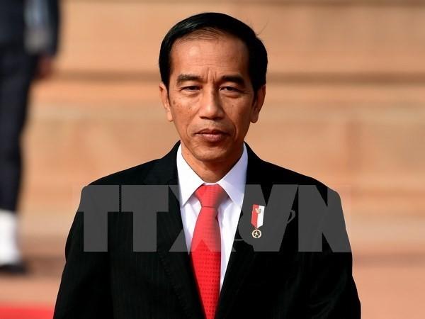 Phát triển tiềm năng hợp tác kinh tế và mở rộng tiếp cận thị trường giữa Indonesia và Việt Nam - ảnh 1