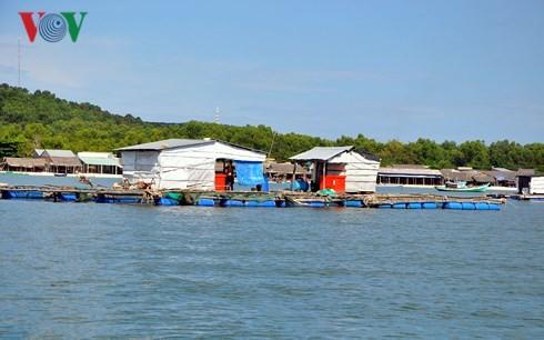 Kiên Giang phát triển kinh tế biển - ảnh 1