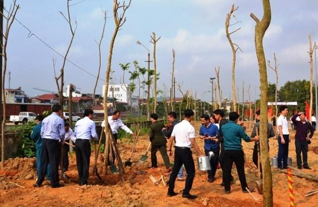 Các địa phương trên cả nước ra quân trồng cây đầu xuân Kỷ Hợi    - ảnh 1