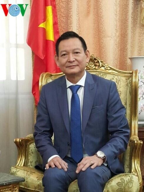 Đại sứ quán Việt Nam tại Ai Cập sẵn sàng bảo hộ công dân ở Libya - ảnh 1