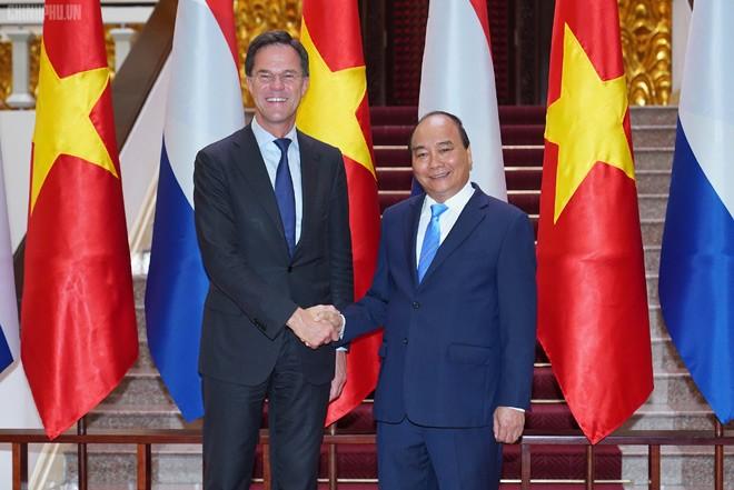Dấu mốc mới cho quan hệ Việt Nam-Hà Lan - ảnh 1