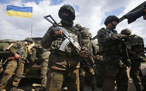 Возможно проведение переговоров о новом прекращении огня на востоке Украины - ảnh 1