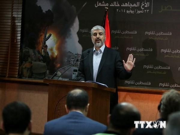 Лидеры ХАМАС готовы к достижению договоренности о прекращении огня в секторе Газа - ảnh 1