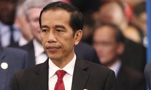 Президент Индонезии выразил озабоченность сложной ситуацией в Восточном море - ảnh 1