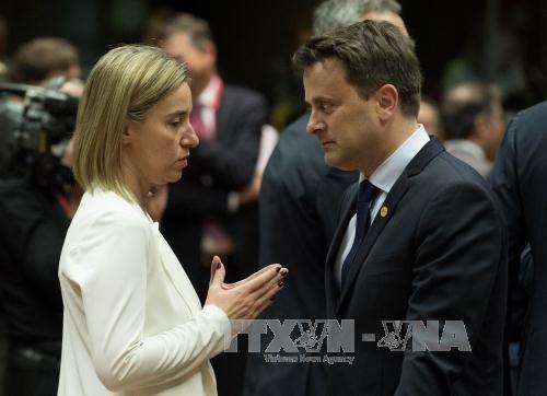 В Брюсселе завершился саммит ЕС по вопросам миграции  - ảnh 1